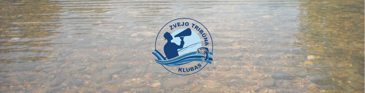 Verslinė žūklė Lietuvos vidaus vandenyse žvejo mėgėjo akimis
