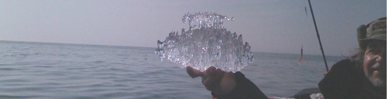 Lietuvos vandens telkinių žuvų ištekliai ir jų būklė šiandien